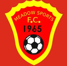 Meadow Sports Football Club Social committee logo