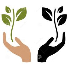 Friends of the University of Dundee Botanic Garden logo