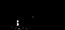 BlockHouse Inc. logo