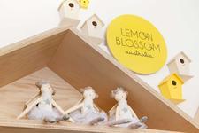 Lemon Blossom Australia logo