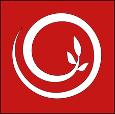 ROOT STUDIO logo