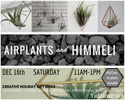 Make a Christmas Gift: Himmeli Mobile with Airplants