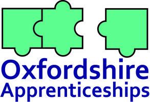 Making Sense of Apprenticeships