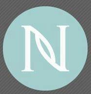 2013 Nerium Houston Area Holiday Event