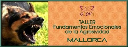 TALLER Fundamentos Emocionales de la Agresividad MALLOR...