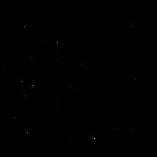 Taylor St Quarters logo