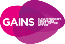GAINS (Gloucestershire's Accelerated Impact Network Support) logo