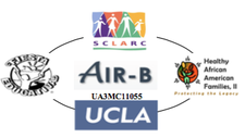 AIR-B Autism Intervention Research Network on Behavioral Health  logo