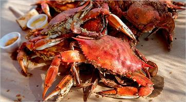 All-You-Can-Eat Crab Feast 2013