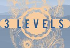3Levels logo