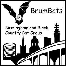 BrumBats logo