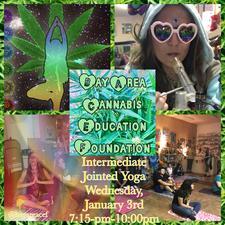 Bay Area Cannabis Education Foundation logo