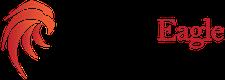 Beardedeagle Management Consultancy Prvt Ltd logo
