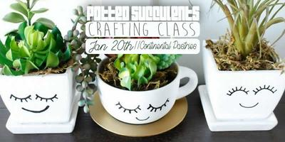 Potted Succulents Crafting Class - Battle Creek