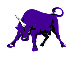 Bullish Conference 2014 - Bullicorns Unite: A Powerful...