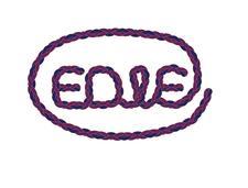 EDW ENTERPRISES LLC logo