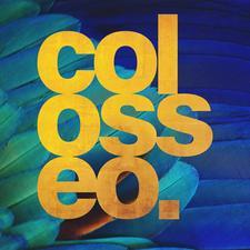 Colosseo. Design & Comunicação logo