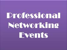Professional Networking Events logo