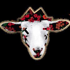 Blyndi logo