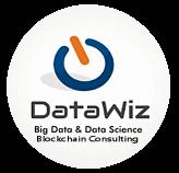 DataWiz Academy logo