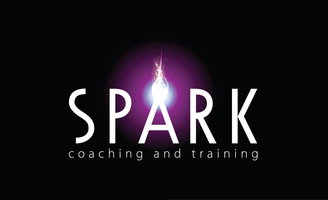 Spark Group Supervision 28 January 2014