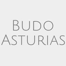 Budo Asturias logo