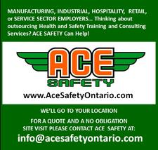 ACE SAFETY Training and Consulting Services logo