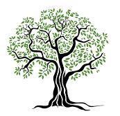 SADED (South Asian Dialouges on Ecological Democrcay) logo