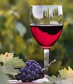 The Rites of Spring Wine Festival March 22-23, 2014