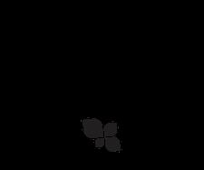 FIT4MOM SF Peninsula logo