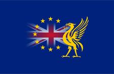 Liverpool for Europe  logo