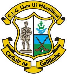 Liam Mellows GAA Club, Galway City  logo