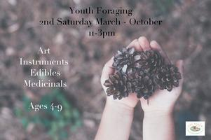Youth Foraging Series: Pressed Flowers and Leaves
