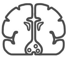 Bristol Neuroscience logo