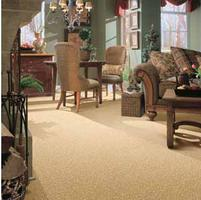 ACE Carpet Care and Fabric Hygiene-Orlando