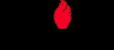 AgileFire logo