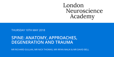 Spine: Anatomy, approaches, degeneration and trauma