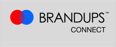 Brandups Connect (Virtual Pitch Event)
