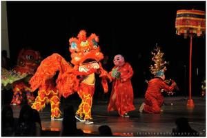 3rd Annual Vietnamese New Years Festival (Tet)