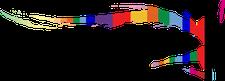 DivaFitClub logo