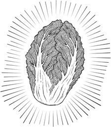 KIMCHI BOYZ logo