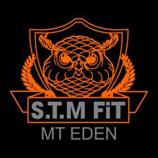 STM FIT logo