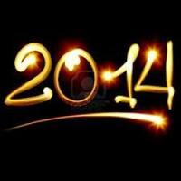 AYP & Dallas International New Year's Eve Bash 2014
