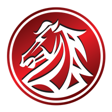Vision Alliance logo