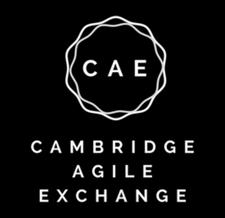 Cambridge Agile Exchange logo