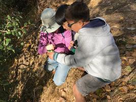 Coyote Meadows Spring 2018 BioBlitz