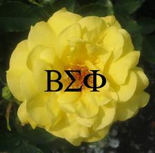 Beta Sigma Phi - Alpha Chapter logo