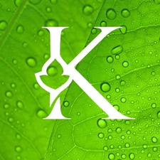 Kudzu Brands - We Grow Brands logo
