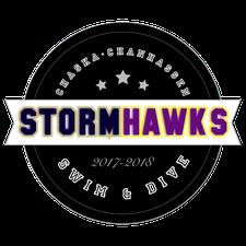 StormHawks Swim & Dive logo