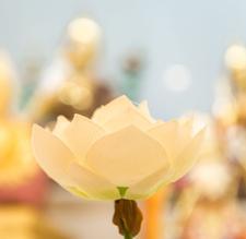 Kadampa Meditation Centre London logo